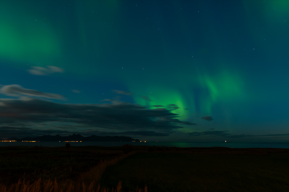 Polarlichter auf Andøya: DAS Erlebnis in lauer Sommernacht