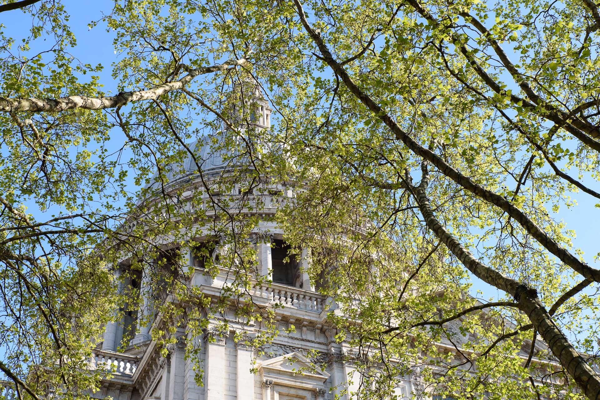 Die Kuppel der St. Paul's Cathedral